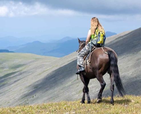 Horse rider showing rural tourism in Post Quake Farming region, North Canterbury